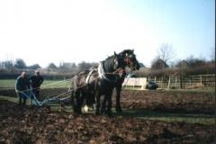 Derrick Ploughing